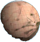sizecomparison-venus-114